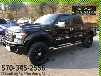 2012 Ford F-150 in Pine Grove PA