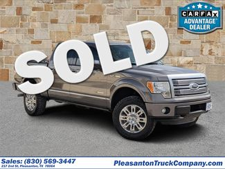 2012 Ford F-150 Platinum | Pleasanton, TX | Pleasanton Truck Company in Pleasanton TX