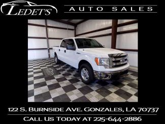 2013 Ford F-150 XLT - Ledet's Auto Sales Gonzales_state_zip in Gonzales