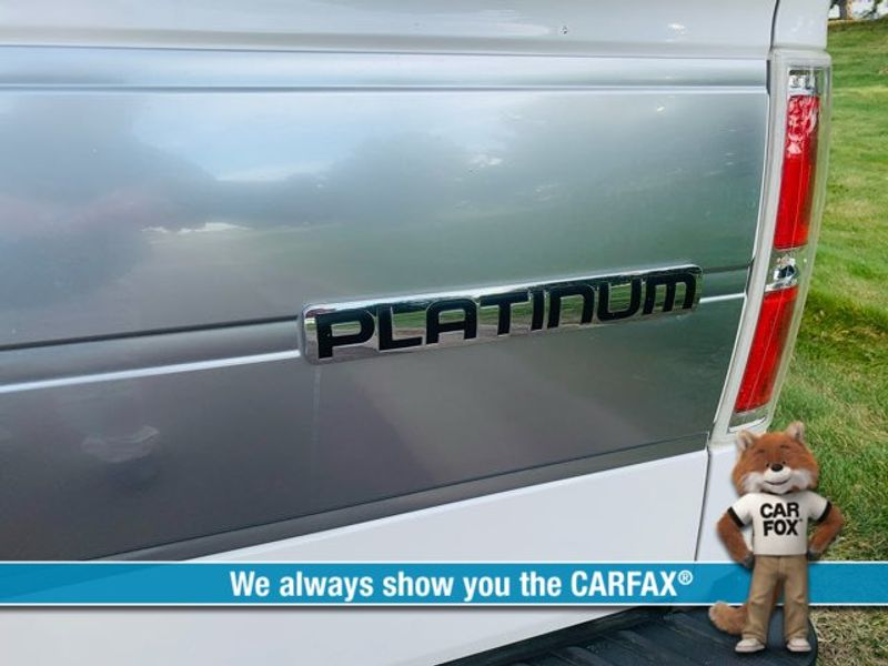 2013 Ford F-150 Platinum  city MT  Bleskin Motor Company   in Great Falls, MT