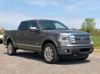 2013 Ford F-150 Platinum in Jackson, MO 63755