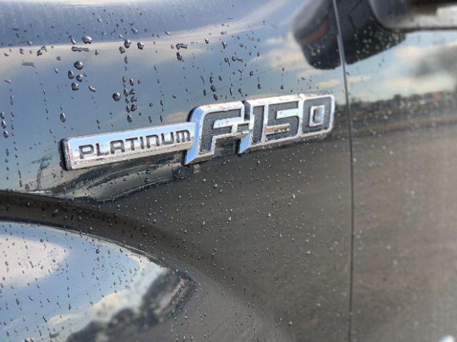 2013 Ford F-150 Platinum in San Antonio, TX 78233