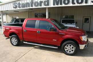 2013 Ford F-150 XLT in Vernon Alabama