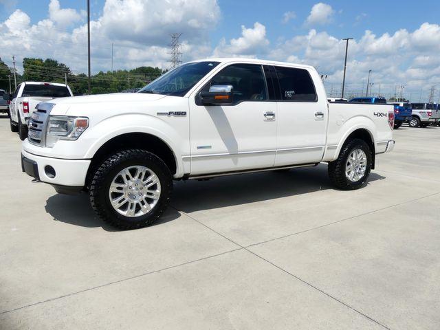 2013 Ford F150 Platinum in Cullman, AL 35058