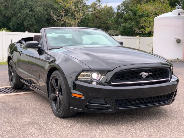 2013 Ford Mustang V6 in Tampa, FL 33624