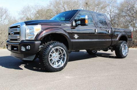 2013 Ford Super Duty F-250 Platinum - 4x4 in Liberty Hill , TX