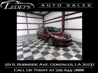 2013 Honda Accord Sport - Ledet's Auto Sales Gonzales_state_zip in Gonzales