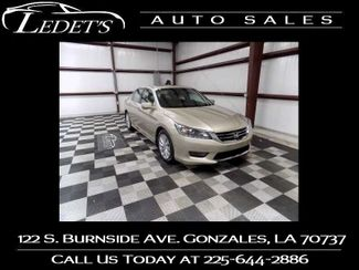 2013 Honda Accord EX-L - Ledet's Auto Sales Gonzales_state_zip in Gonzales