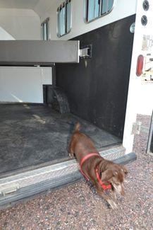 2014 Bison 8310TE   city Colorado  Boardman RV  in Pueblo West, Colorado