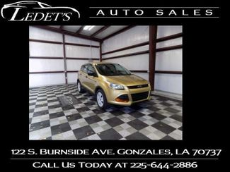 2014 Ford Escape S - Ledet's Auto Sales Gonzales_state_zip in Gonzales