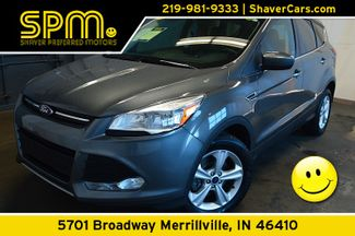 2014 Ford Escape SE in Merrillville, IN 46410