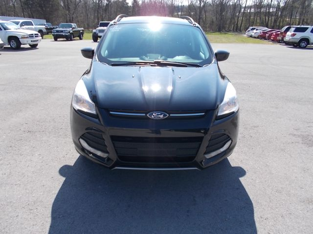 2014 Ford Escape SE Shelbyville, TN 4