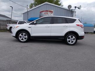2014 Ford Escape SE Shelbyville, TN 1