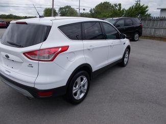 2014 Ford Escape SE Shelbyville, TN 12