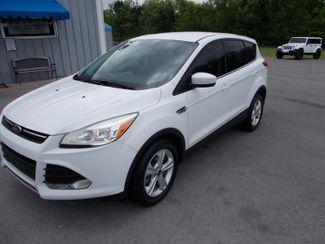 2014 Ford Escape SE Shelbyville, TN 6