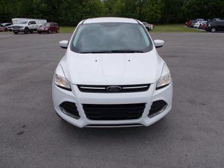 2014 Ford Escape SE Shelbyville, TN 7