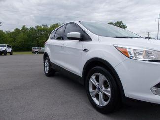 2014 Ford Escape SE Shelbyville, TN 8