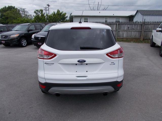 2014 Ford Escape SE Shelbyville, TN 13
