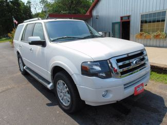 2014 Ford Expedition Limited Alexandria, Minnesota 1