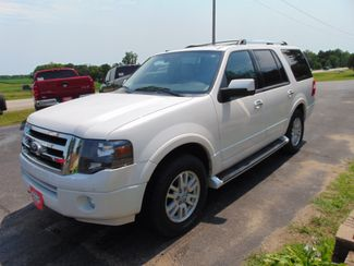2014 Ford Expedition Limited Alexandria, Minnesota 2