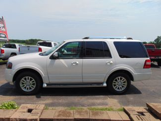 2014 Ford Expedition Limited Alexandria, Minnesota 3
