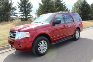 2014 Ford Expedition in Great Falls, MT