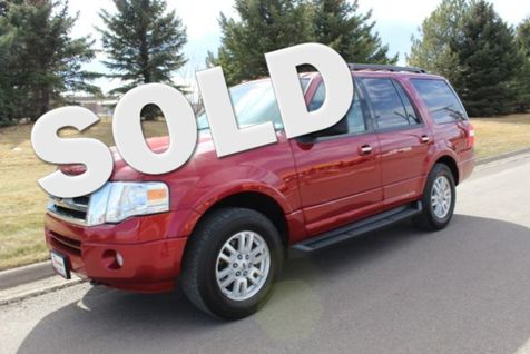 2014 Ford Expedition XLT in Great Falls, MT