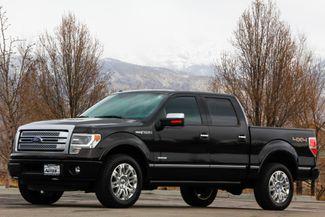 2014 Ford F-150 Platinum 4x4 in American Fork, Utah 84003