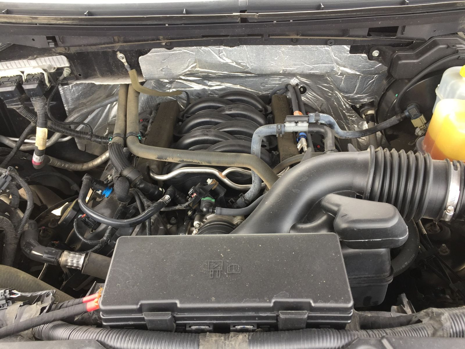 2014 Ford F 150 Platinum Brownsville Tx English Motors Engines In