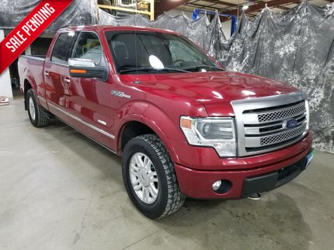 2014 Ford F-150 Platinum in Dickinson, ND