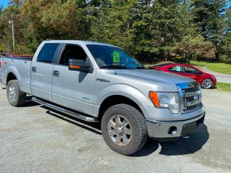 2014 Ford F-150 XLT in Eastsound, WA 98245