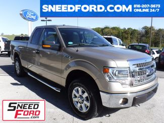 2014 Ford F-150 XLT 4X4 5.0L V8 in Gower Missouri, 64454