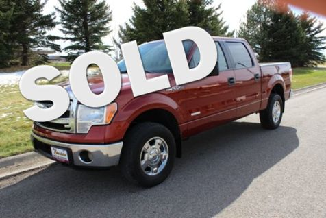 2014 Ford F-150 XLT in Great Falls, MT