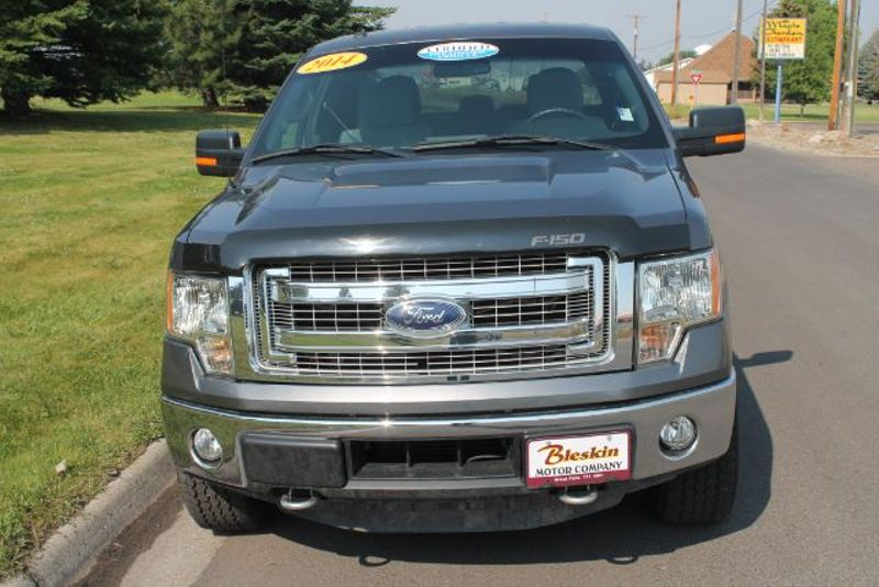 2014 Ford F-150 XLT  city MT  Bleskin Motor Company   in Great Falls, MT
