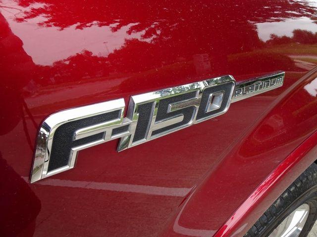 2014 Ford F-150 Platinum in McKinney, Texas 75070