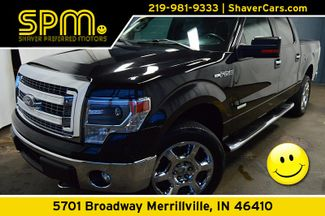 2014 Ford F-150 XLT CREW CAB 4x4 in Merrillville, IN 46410