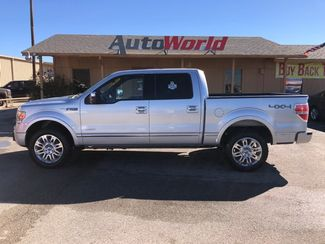 2014 Ford F150 Platinum 4x4 in Marble Falls, TX 78654