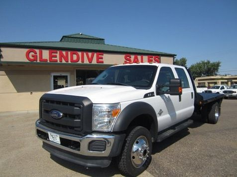 2014 Ford Super Duty F-550 DRW Chassis Cab XL in Glendive, MT
