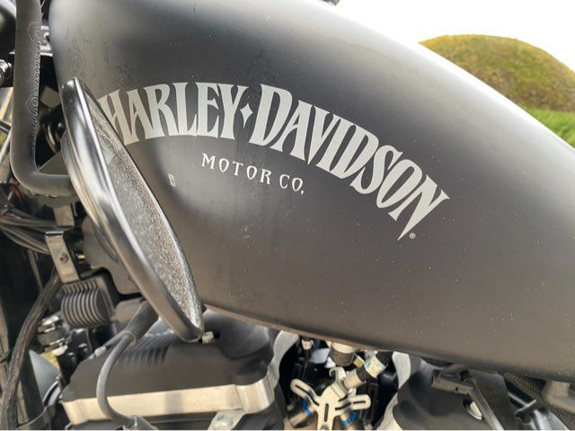 2014 Harley-Davidson Iron 883 in McKinney, TX 75070