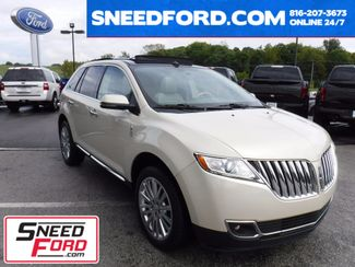 2014 Lincoln MKX in Gower Missouri, 64454