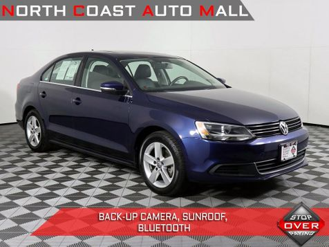 2014 Volkswagen Jetta TDI w/Premium in Cleveland, Ohio
