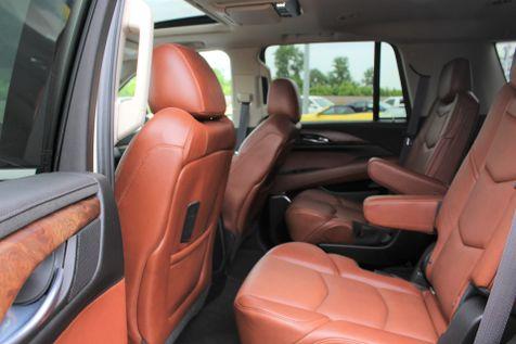 2015 Cadillac Escalade Premium   Granite City, Illinois   MasterCars Company Inc. in Granite City, Illinois