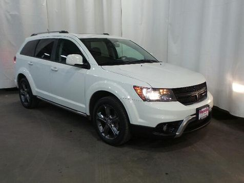 2015 Dodge Journey Crossroad in Victoria, MN