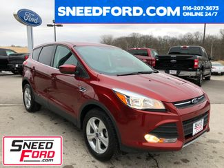2015 Ford Escape SE in Gower Missouri, 64454