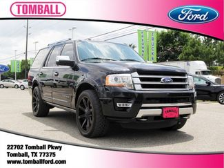 2015 Ford Expedition Platinum in Tomball, TX 77375