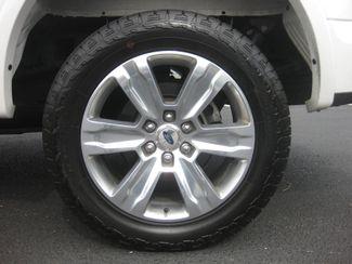 2015 Ford F-150 Platinum Conshohocken, Pennsylvania 22