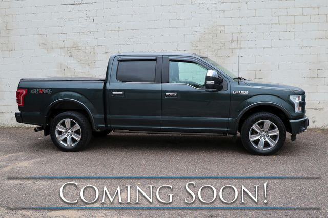 2015 Ford F-150 Platinum Crew Cab 4x4 w/Nav, Heated/Cooled/Massage Seats, Sony Audio & Tow Pkg in Eau Claire, Wisconsin 54703