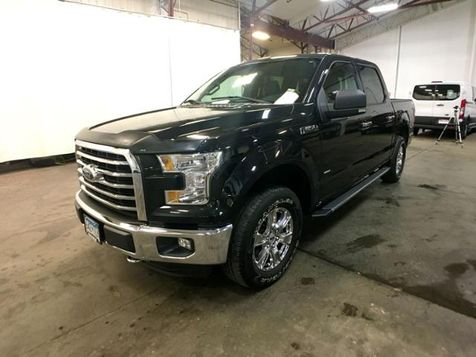 2015 Ford F-150 XLT in Victoria, MN