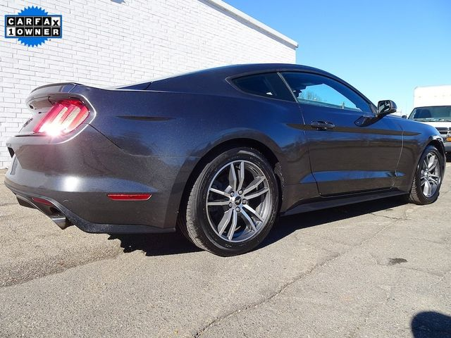 2015 Ford Mustang EcoBoost Madison, NC 2