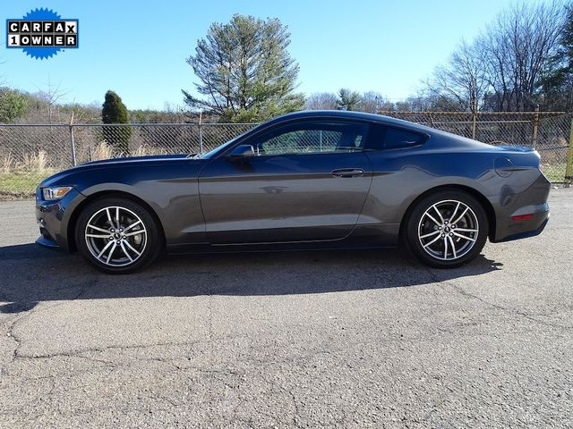 2015 Ford Mustang EcoBoost Madison, NC 5